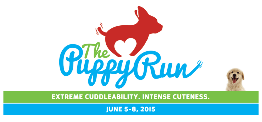 The Puppy Run: Intense Running Cuteness  'Cause It's Time for Another Virtual Run!