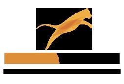 tiger-trade-logo-lg.png