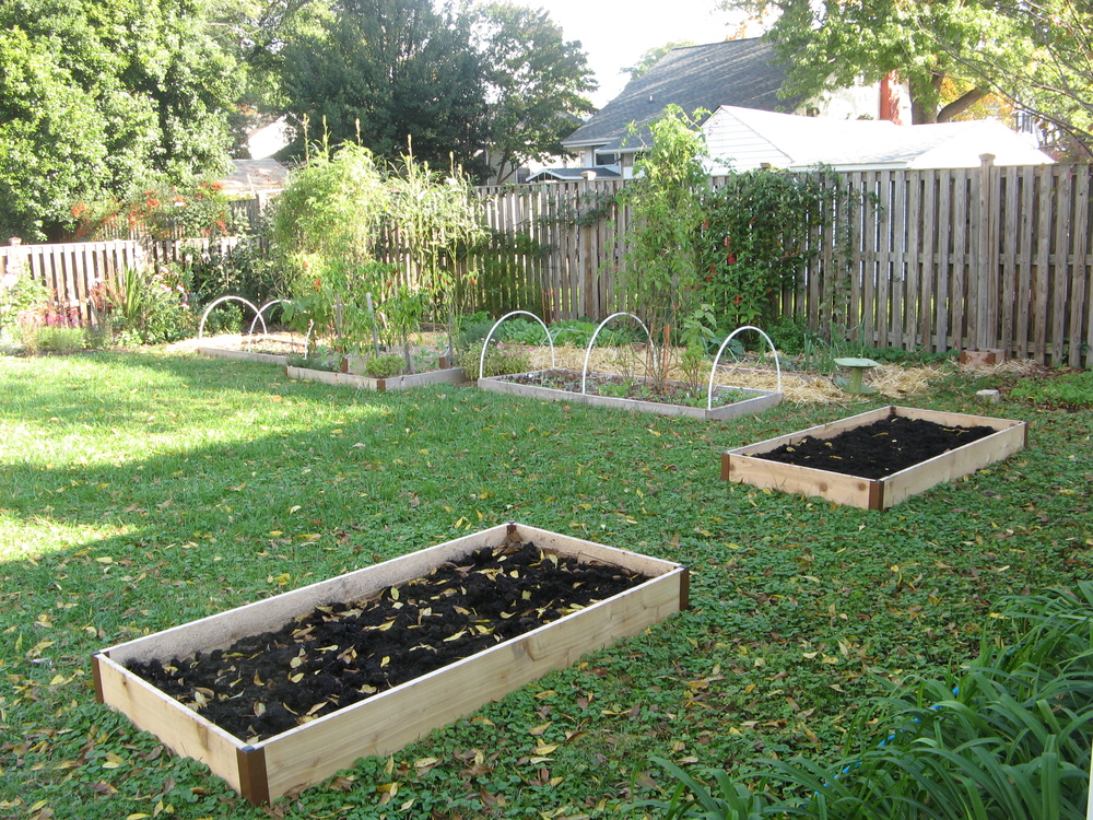 This garden began when I purchased my first home in 2009. What began as a nearly blank slate has grown into a backyard oasis where I try to grow more food, year-round.