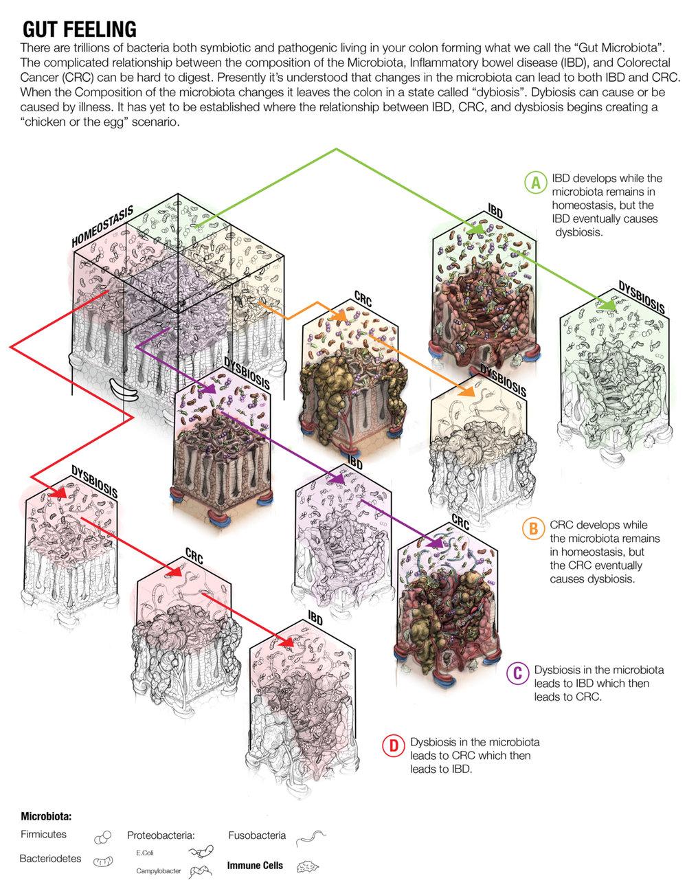 Iterations-7.jpg