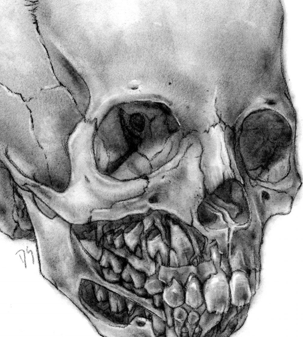 Carbondust-Skull.jpg