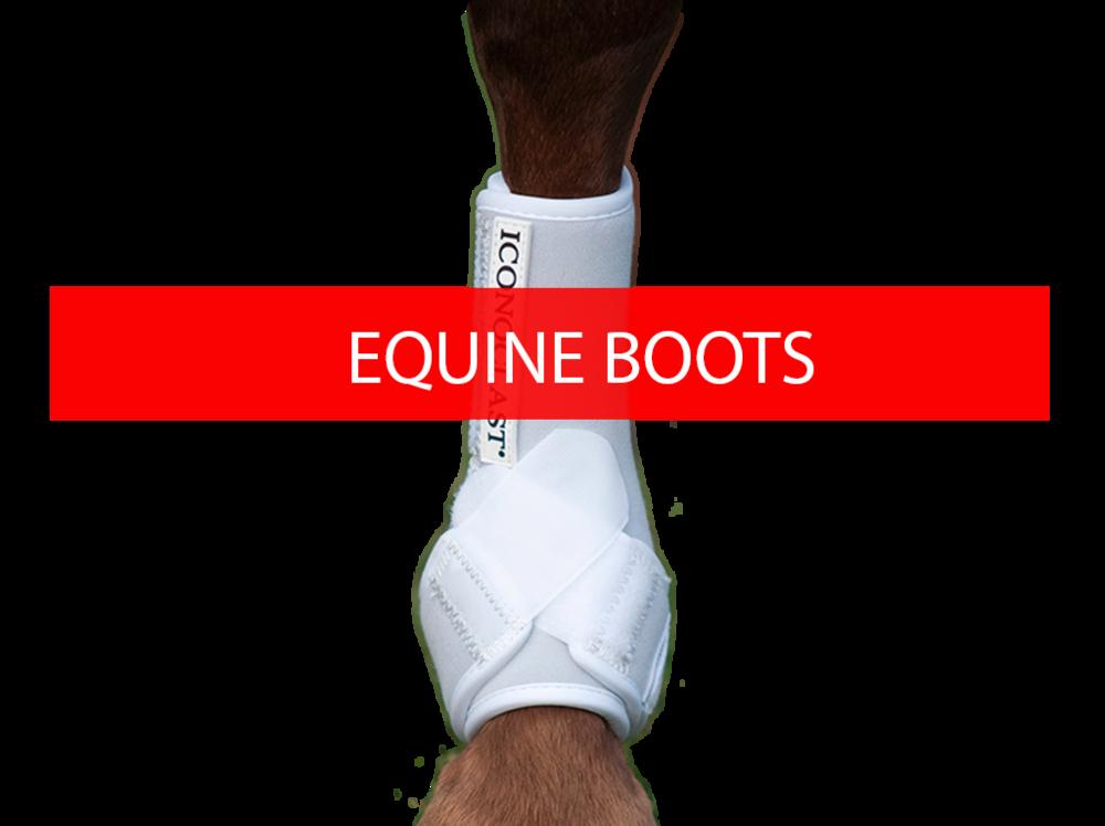 Equine Legwear