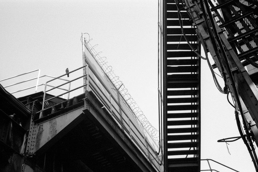 NYC_35mm_00008.jpg