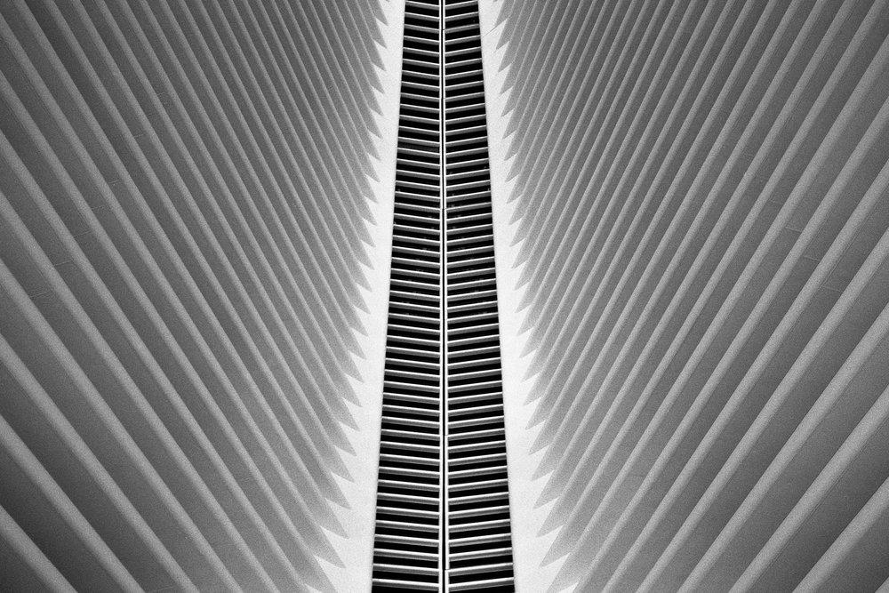 NYC_35mm_00045.jpg