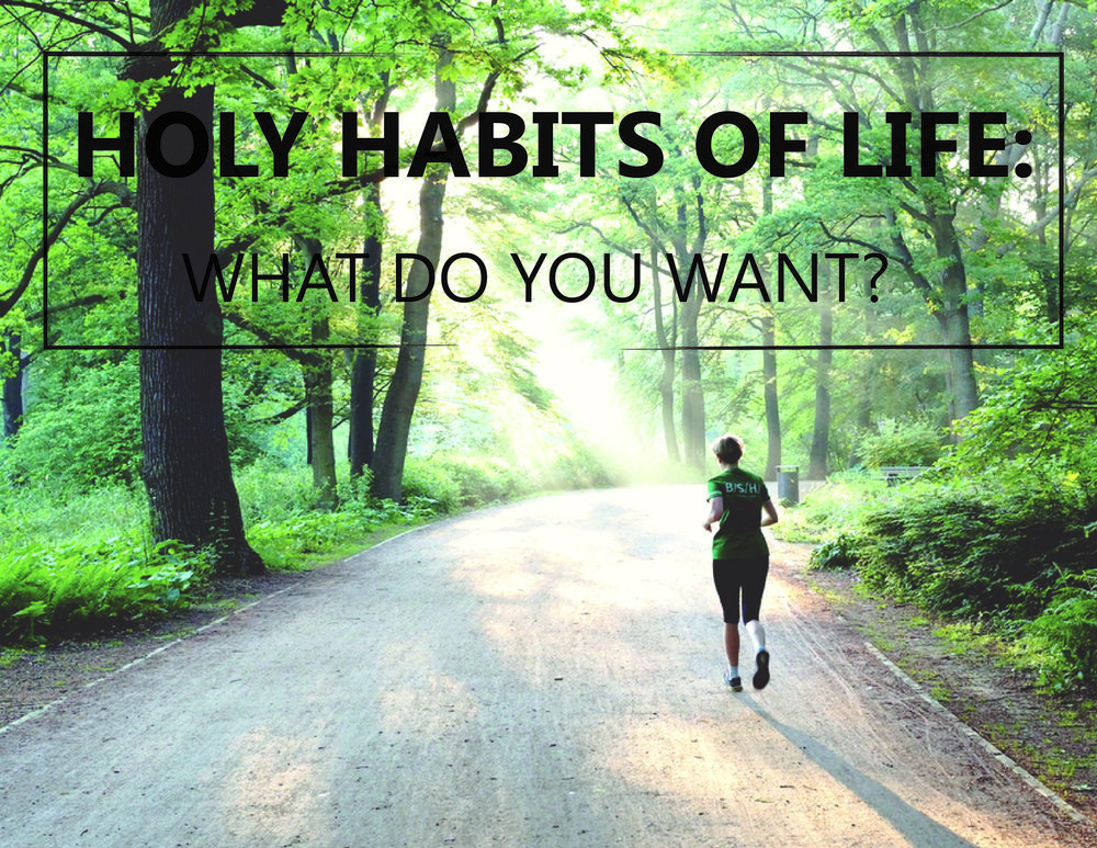holyhabits-01-01.jpg