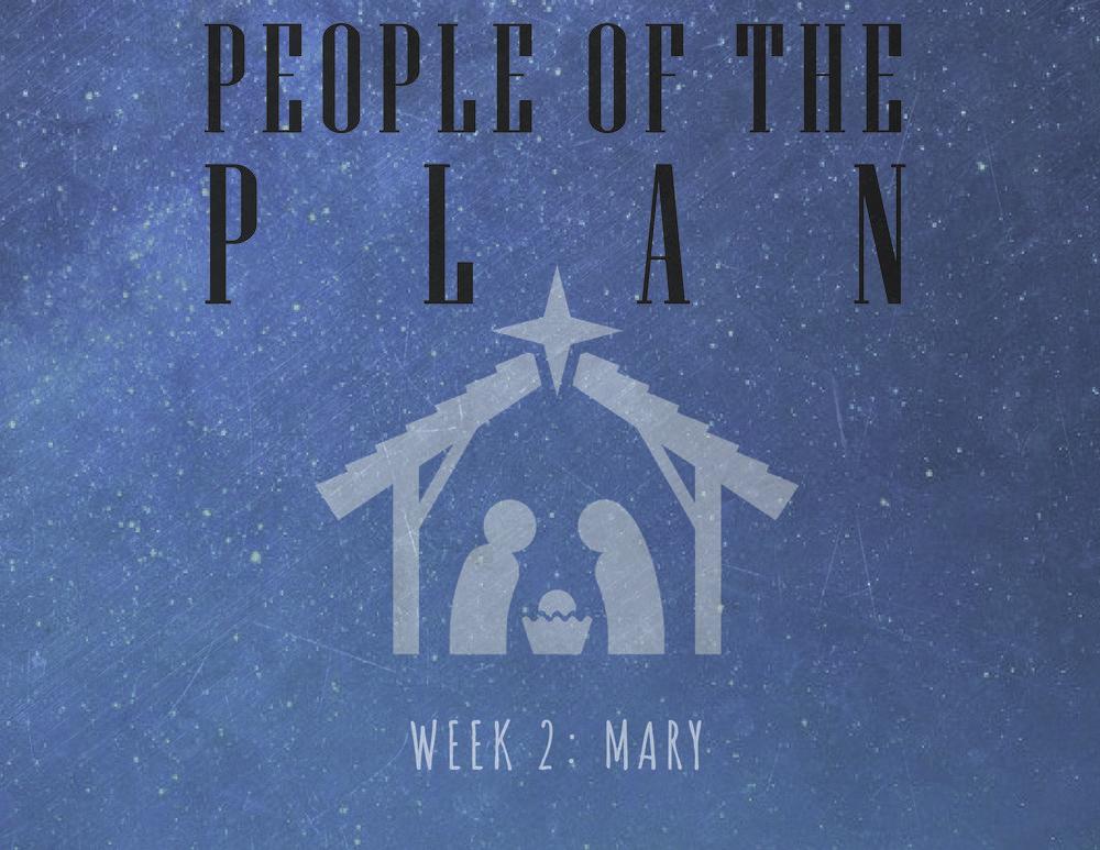 week 2 mary-01.jpg