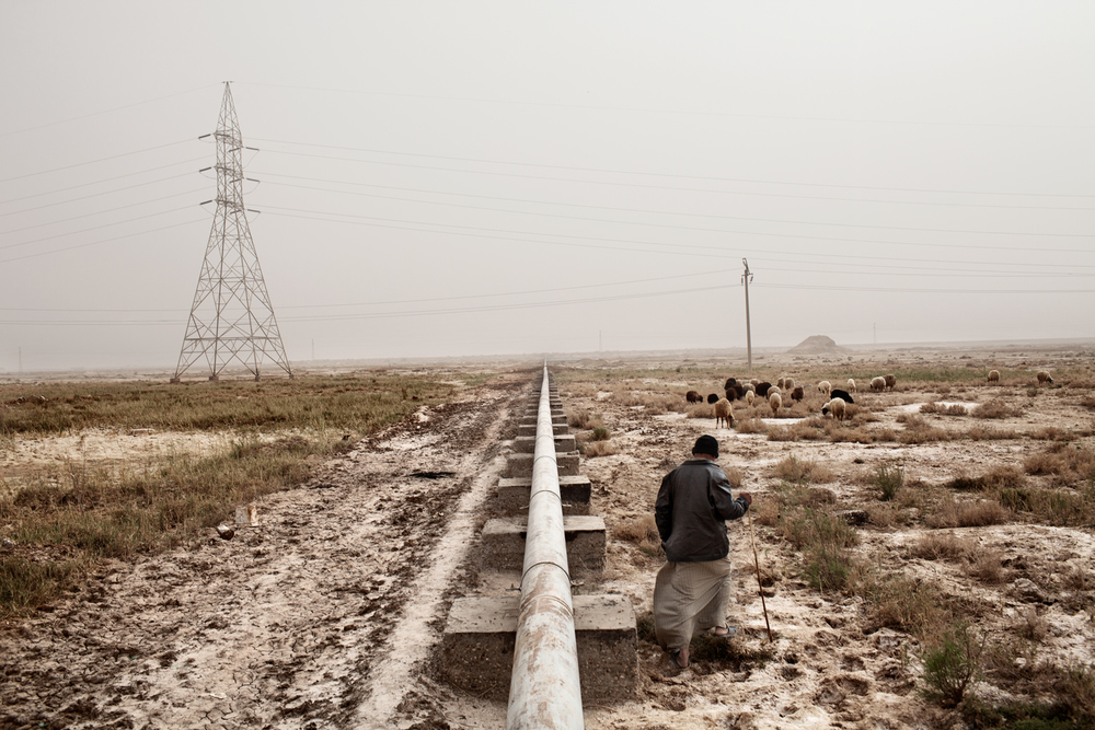 A shepherd walks near a South Oil Company pipeline in Basra, Iraq.