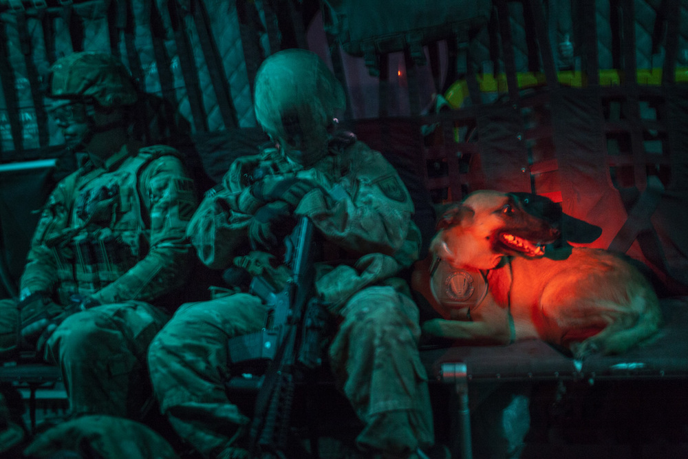 A Military Working Dog team during a U.S. Army operation in Kandahar, Afghanistan. Photo by Adam Ferguson for National Geographic