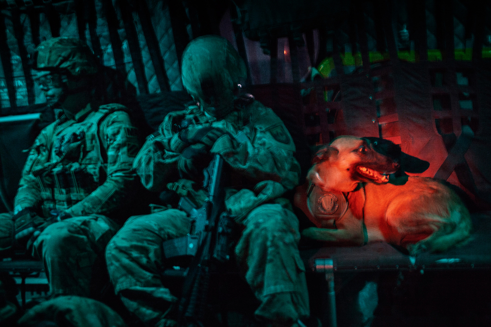 Staff Sergeant Jonathan Bourgeois and Military Working Dog Oopey, a Belgian Malinois patrol explosives dog, fly on a U.S. Army Chinook helicopter from Camp Nathan Smith to Combat Operations Post Pacemaker in Kandahar, Afghanistan.