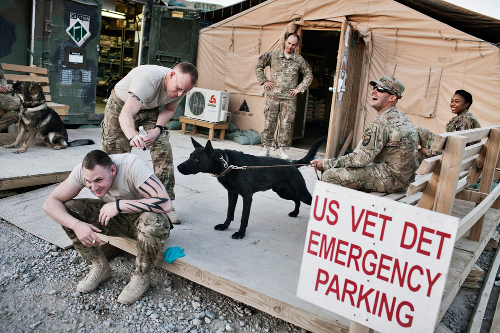 The 438th Medical Detachment Veterinary Medical Surgical Team sit outside the Veterinary tent on Kandahar Airfield, Afghanistan.
