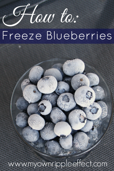 How to Freeze Blueberries 2