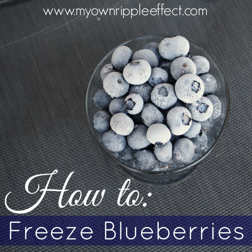 How-to-Freeze-Blueberries.png