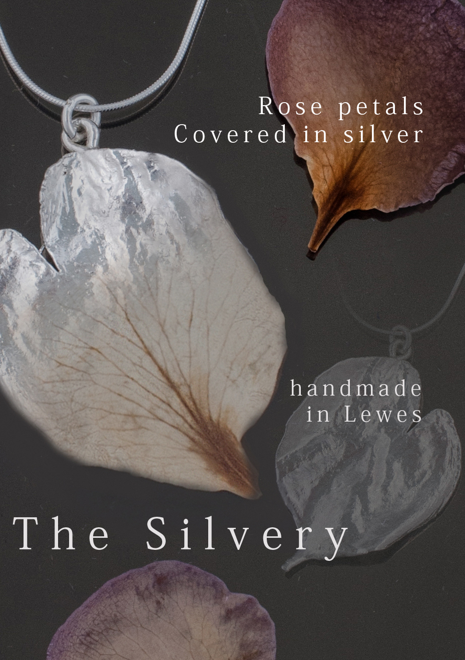 The Silvery Newsletter by 100Designs