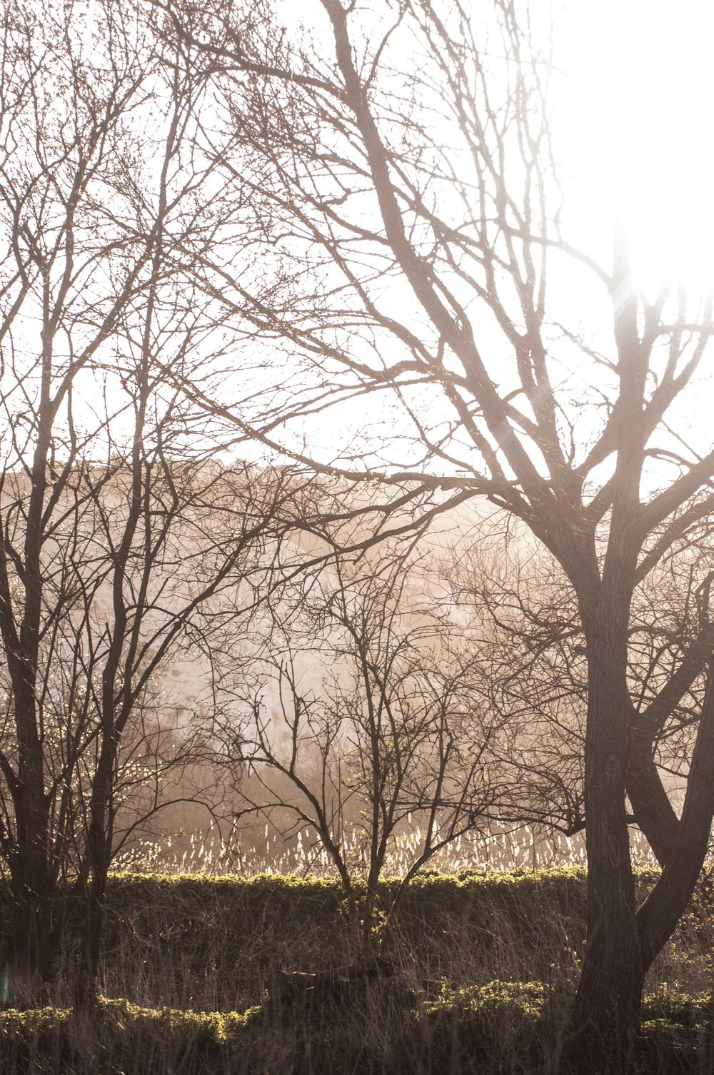 Lewes Railwayland 1st April 2105 by Katie Vandyck.jpg