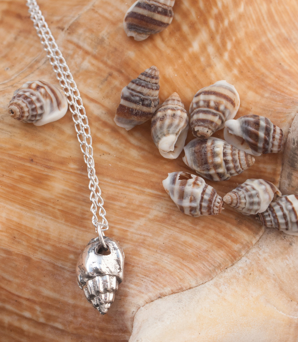 Silvery tiny shell necklace by Katie Vandyck.jpg