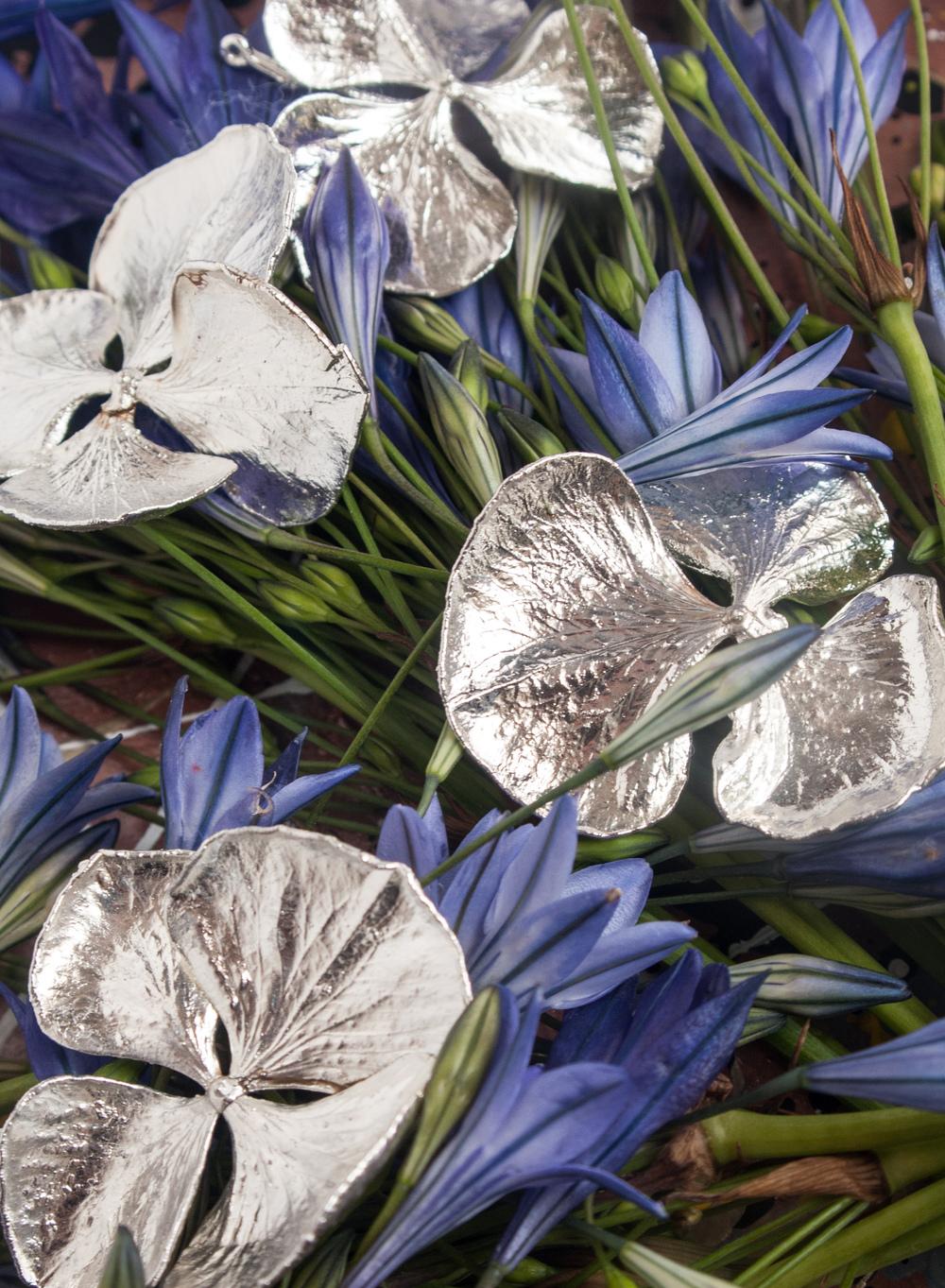 Silvery azaleas.jpg