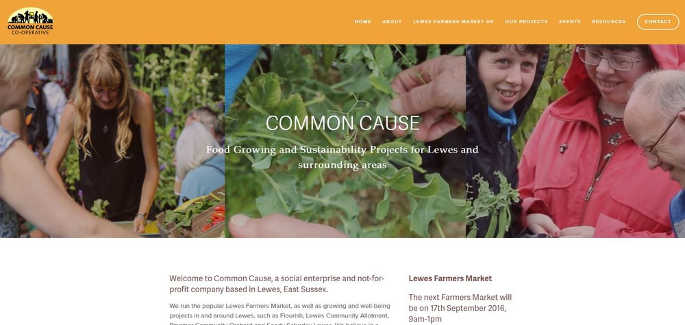 Screenshot of Lewes Common Cause website