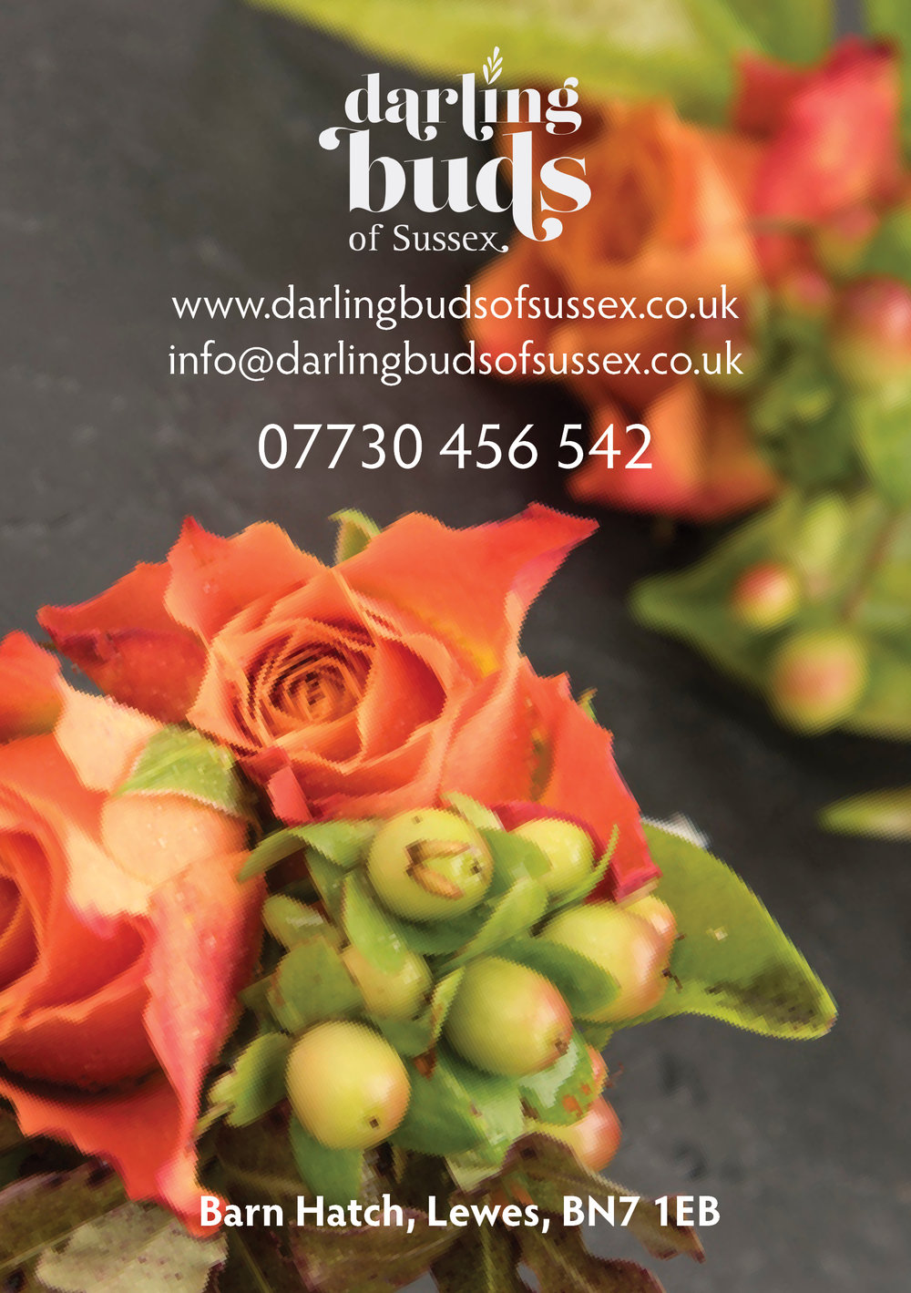 Darling Buds of Sussex leaflet.jpg