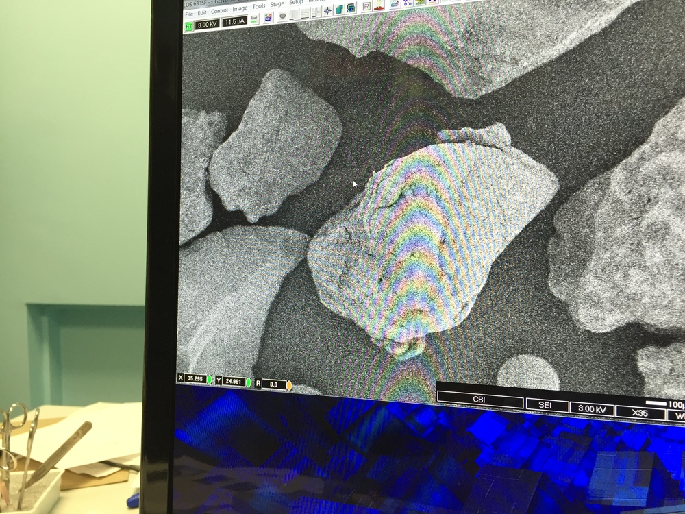 004_Microscope - 04IMG_4320.JPG