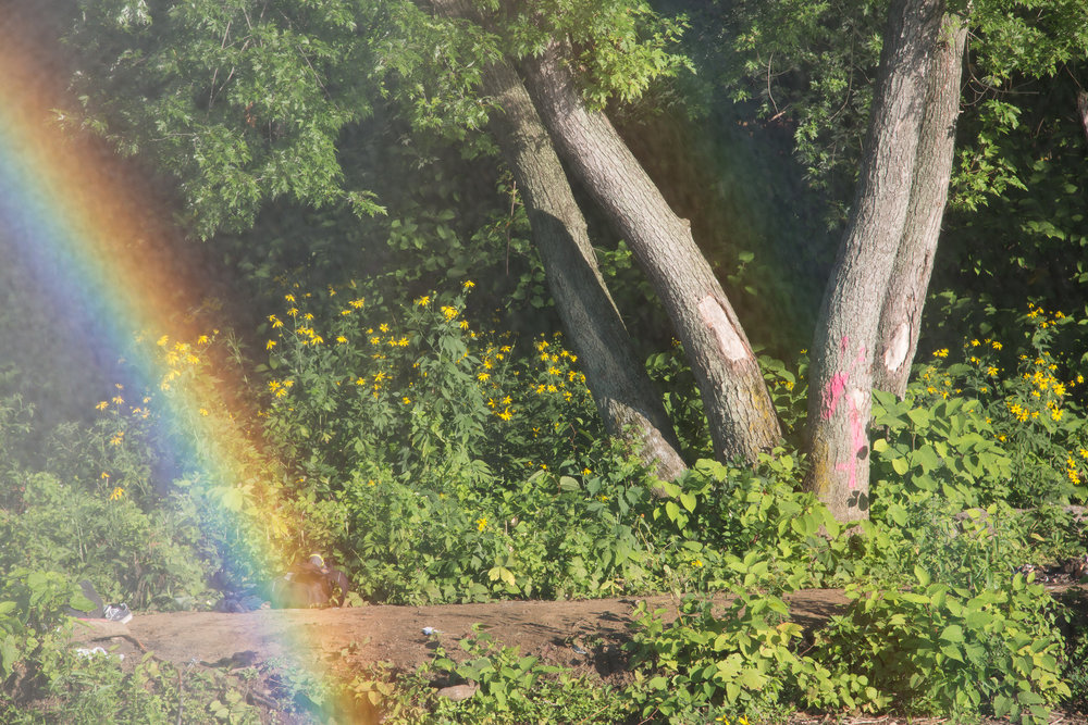 007_Rainbow-167.jpg
