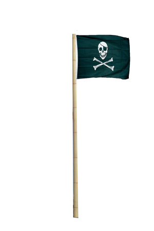 Lots of poles and Jolly Roger Flags