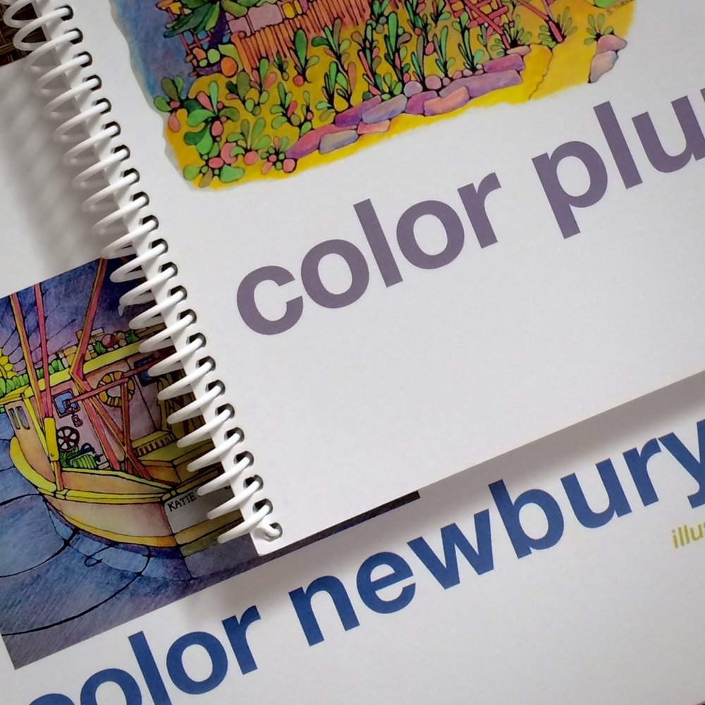 "Color Plum Island - Color Newburyport Coming this Spring, ""Color Cape Cod""!"