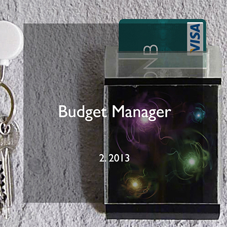 budget manager.jpg