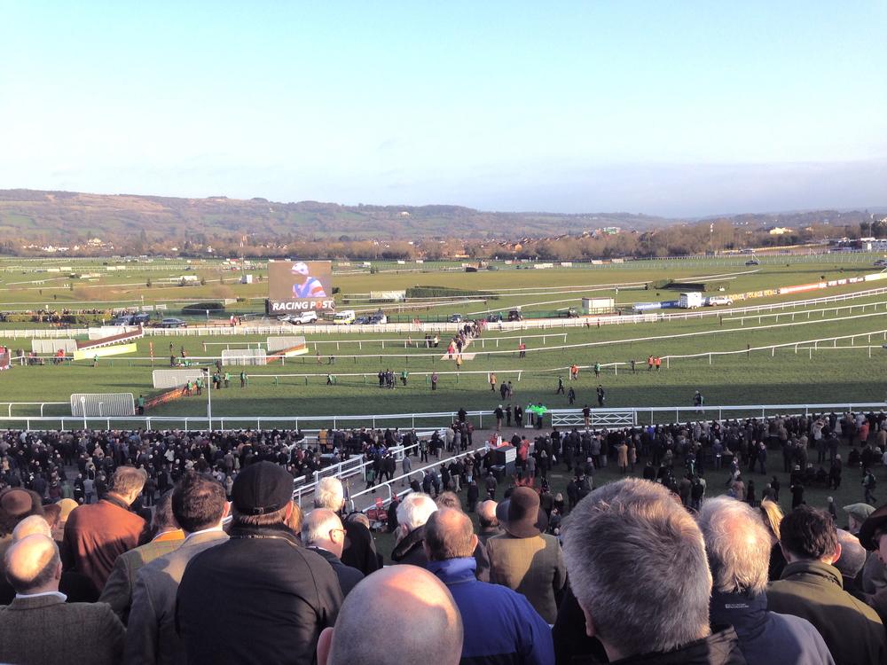 cheltenham racecouse