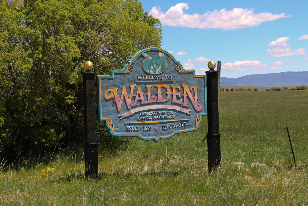 Entering Walden