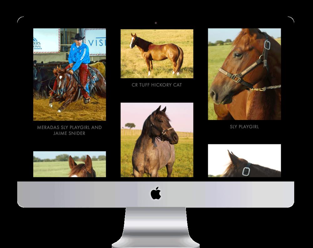 rocking_l_horses2.png