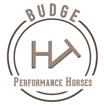 Budge_Final_Logo_2.png