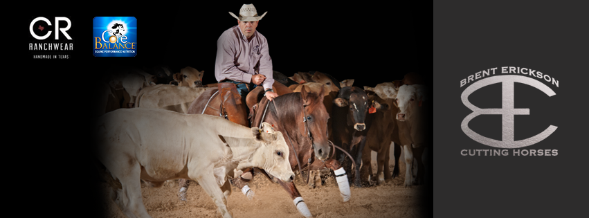 Brent Erickson Cutting Horses Spotted Donkey Branding