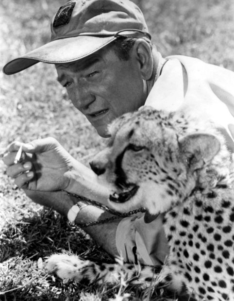 John Wayne with Cheetah, Hatari! 1962
