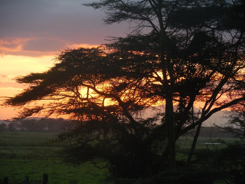 Sunrise, Amboseli National Park, Kenya 2014 © Flyga Twiga LLC