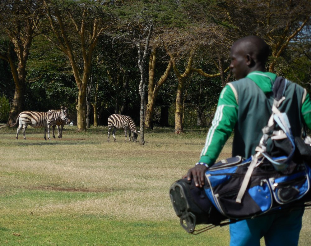 Playing Golf with Zebras Great Rift Valley Lodge & Golf Resort, Kenya © Flyga Twiga LLC