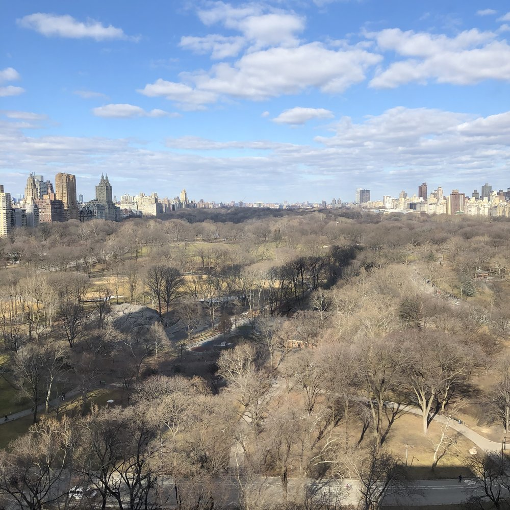 Central Park View from New York Athletic Club ©Flyga Twiga LLC
