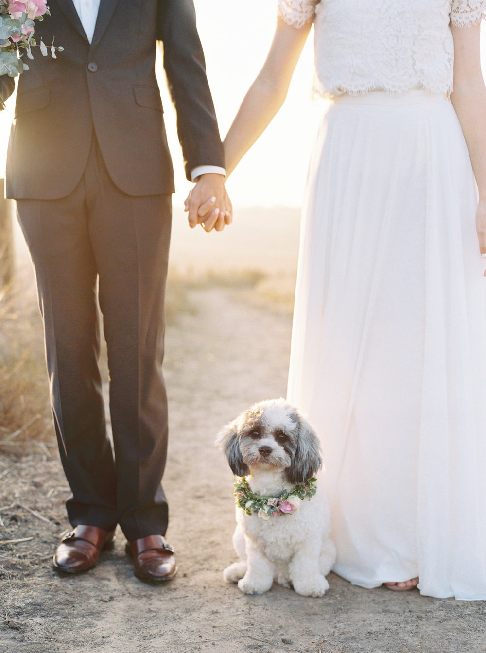 Dreamy golden hour field engagement photo session with dog | Bouquet & floral dog collar by Compass Floral | Wedding Florist in San Diego and Southern California | Meiwen Wang Photography    #gardenromantic       #sandiegowedding     #sandiegoweddingflorist       #orangecountyflorist     #floraldesign       #dreamwedding     #fineartwedding     #fineartflowers     #fineartcuration     #weddingdetails     #weddinginspiratio   n #engaged #engagementphotos #engagementphotooutfitinspiration #fieldphotos #dreamyphotos #goldenhour  #weddingdog  #dogsinweddings  #flowerdog #floraldogcollar #dogcollarflower #dogcollar #puppydog #doglovers #dogsandflowers #puppyeyes #puppycuddles #shichons #bichon #shihtzu  #engagementphotobouquet