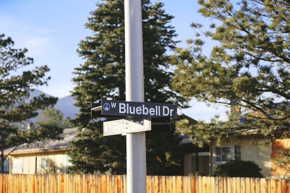 West Bluebell Drive.  I've written that one out a few times!