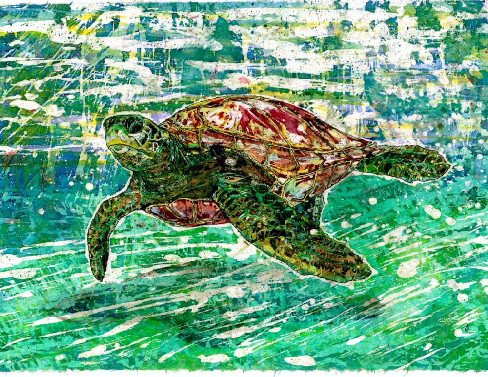 """""""Green Turtle"""""""