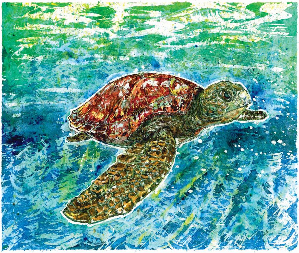 """Gulf Turtle"""