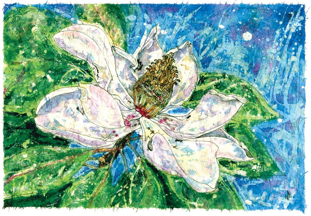 Magnolia Bloom.jpg