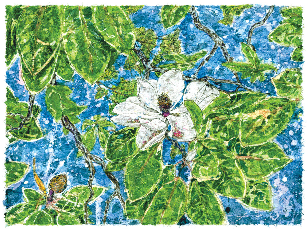 Magnolia Large.jpg
