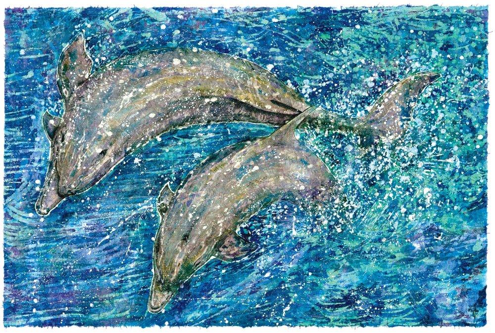 Dolphins Again.jpg