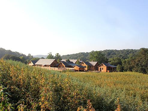 Farm-Site-sm.jpg