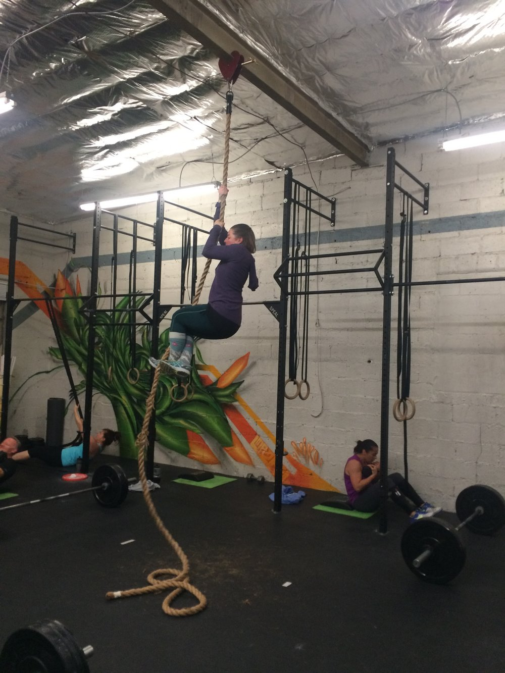 Mrs. X (aka Amy) getting after some rope climbs last week.