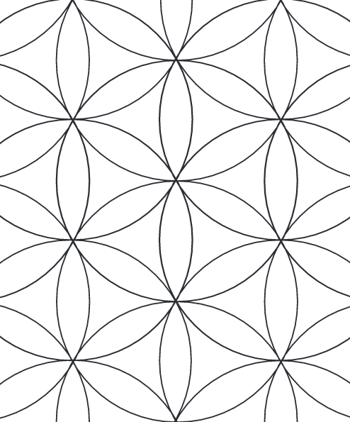 digitally drafted flower of life (2015)