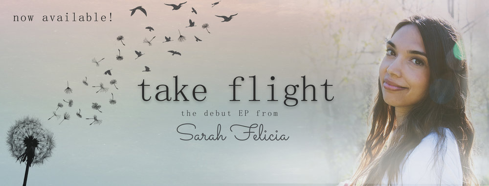 Take Flight - Sarah Felicia