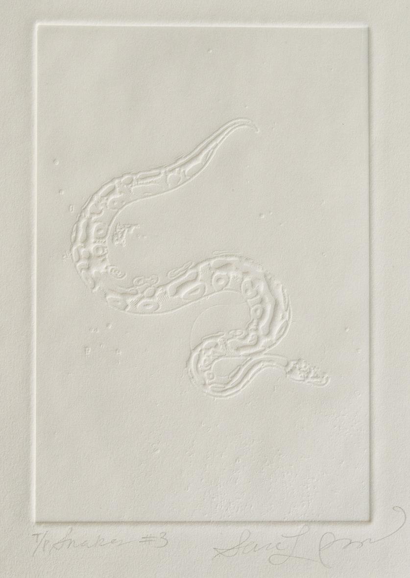 2200px-06-Snakes3_5644.jpg