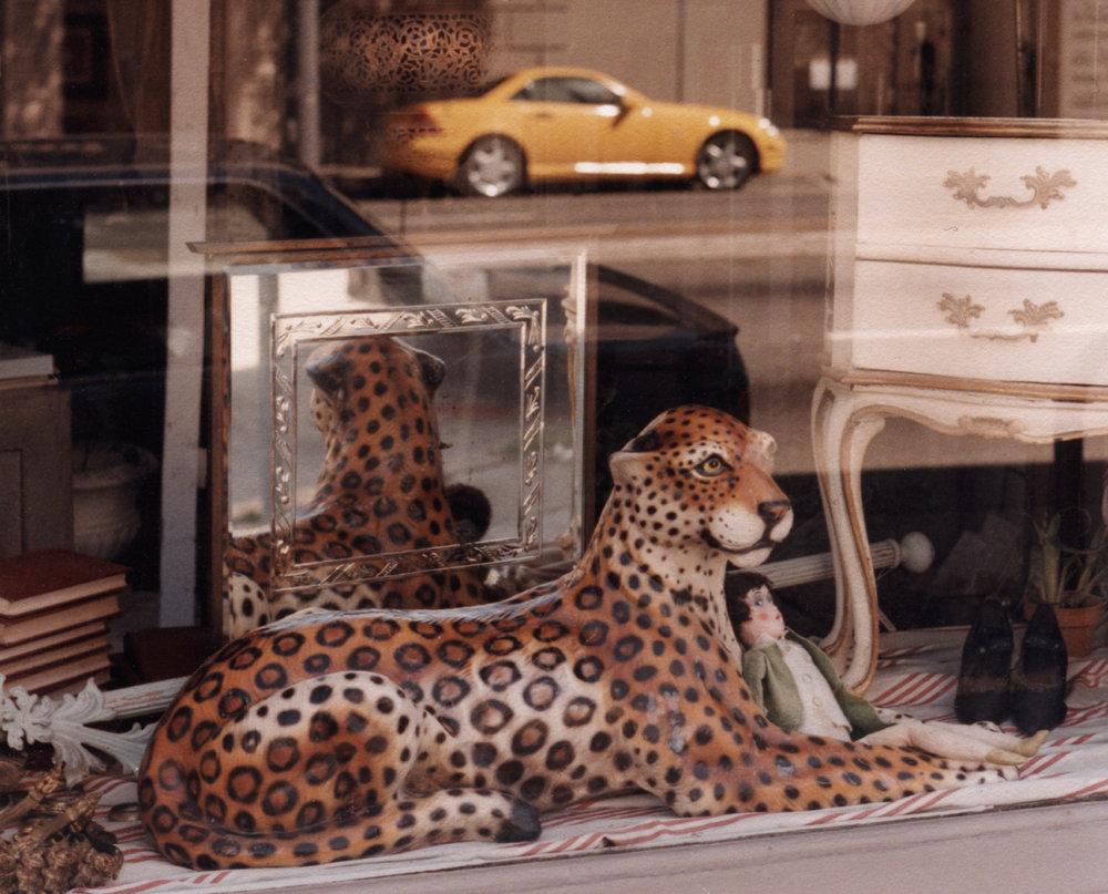 2200px-12-leopardpage.jpg