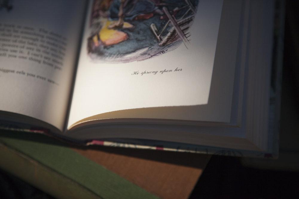 2200px-01-book18-5307.jpg
